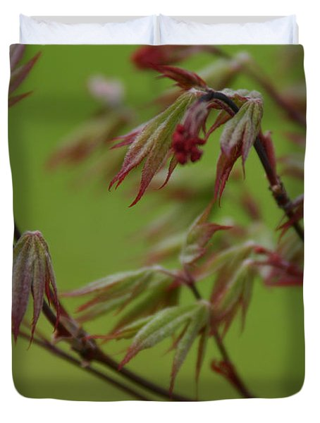 Red Maple Duvet Cover by Kelly Hazel