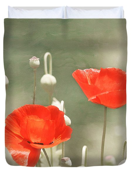 Red Poppies Duvet Cover by Kim Hojnacki