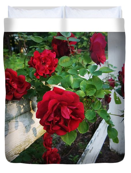 Red Roses - White Fence Duvet Cover by Brian Wallace