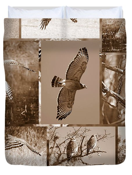 Red-Shouldered Hawk Poster - Sepia Duvet Cover by Carol Groenen