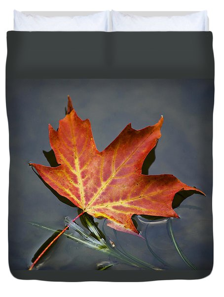 Red Sugar Maple Leaf Duvet Cover by Christina Rollo