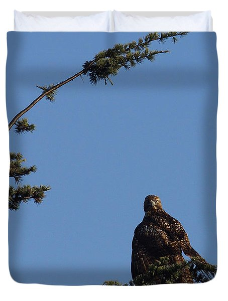 Red Tailed Hawk 2 Duvet Cover by Ernie Echols