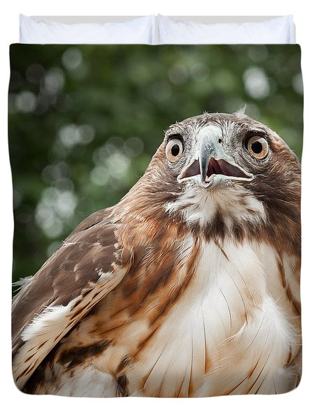 Red-Tailed Hawk Square Duvet Cover by Bill  Wakeley