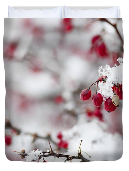 Red Winter Berries Under Snow Duvet Cover by Elena Elisseeva