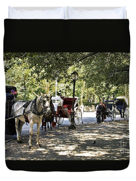 Rest Stop - Central Park Duvet Cover by Madeline Ellis