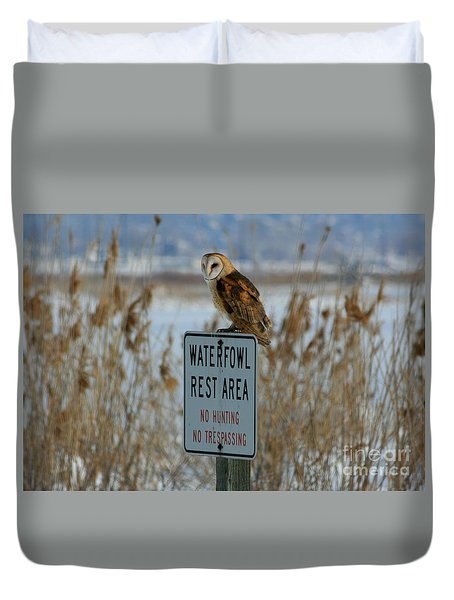 Resting Owl Duvet Cover by Marty Fancy