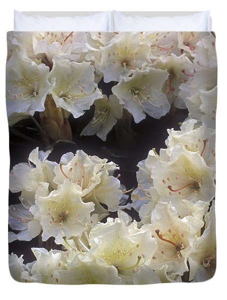 Rhododendrons Duvet Cover by Anonymous