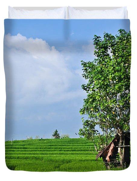 Rice Fields Duvet Cover by Nila Newsom