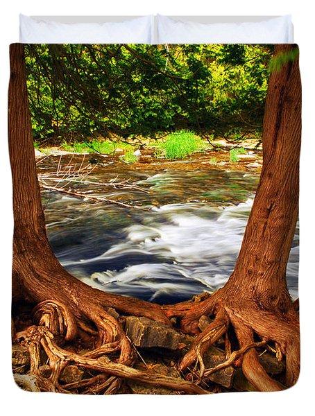 River Duvet Cover by Elena Elisseeva