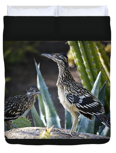 Roadrunners At Play  Duvet Cover by Saija  Lehtonen