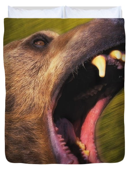 Roaring Grizzly Bears Face Rocky Duvet Cover by Thomas Kitchin & Victoria Hurst