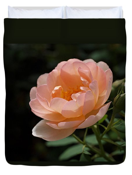 Rose Blush Duvet Cover by Rona Black