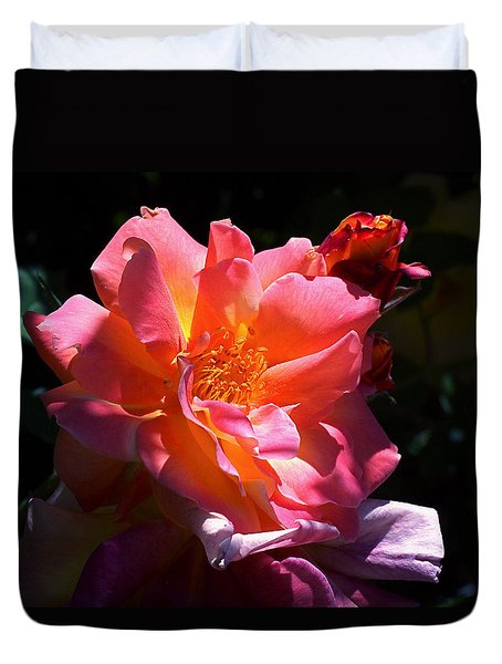 Rose Glow Duvet Cover by Rona Black