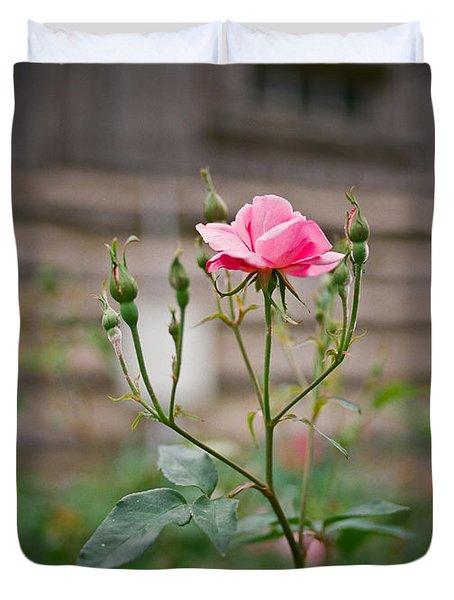 Rose Of Independence Duvet Cover by Linda Unger