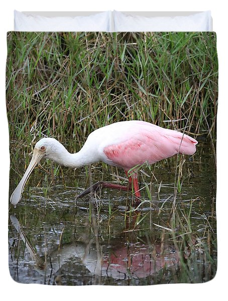Roseate Spoonbill Reflection Duvet Cover by Carol Groenen