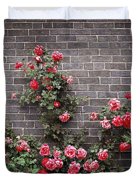 Roses on brick wall Duvet Cover by Elena Elisseeva