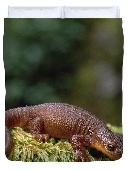Rough-skinned Newt Oregon Duvet Cover by Gerry Ellis