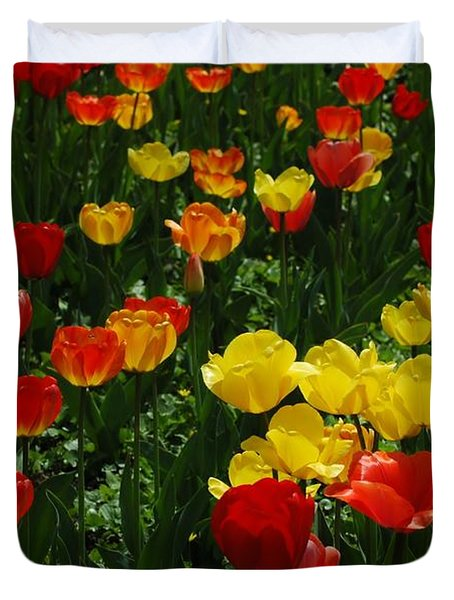 Rows Of Tulips Duvet Cover by Kathleen Struckle