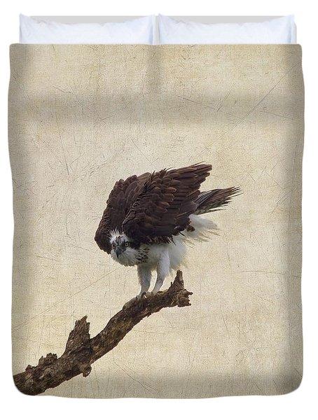 Ruffled Up Osprey Duvet Cover by Kim Hojnacki
