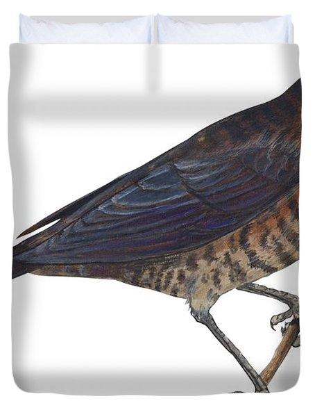 Rusty Blackbird  Duvet Cover by Anonymous