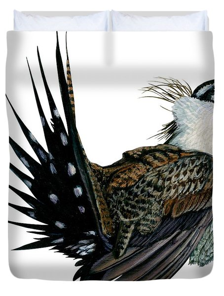 Sage grouse drawing - photo#32
