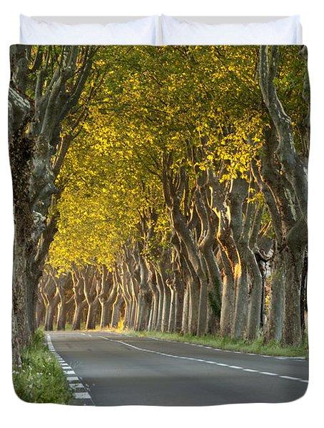Saint Remy Trees Duvet Cover by Brian Jannsen