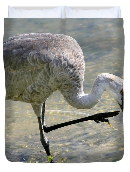 Sandhill Crane Balancing On One Leg Duvet Cover by Sabrina L Ryan