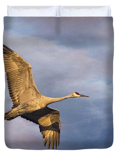 Sandhill Crane In Flight Duvet Cover by Priscilla Burgers