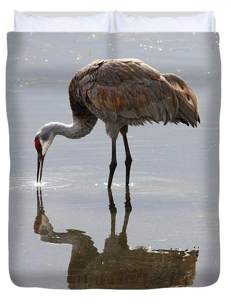 Sandhill Crane on Sparkling Pond Duvet Cover by Carol Groenen