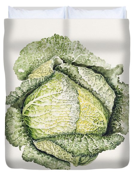 Savoy Cabbage  Duvet Cover by Alison Cooper