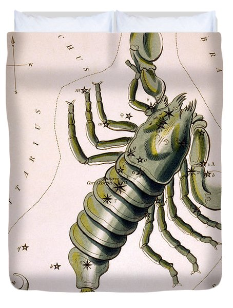 Scorpio Constellation  1825 Duvet Cover by Daniel Hagerman