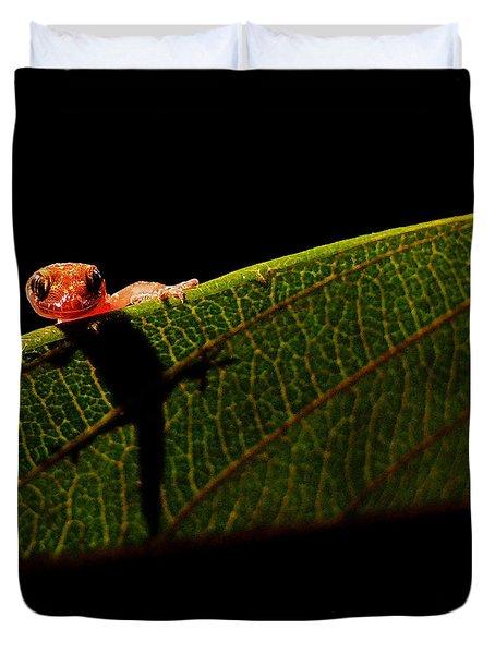 Screen Test Duvet Cover by Stuart Harrison