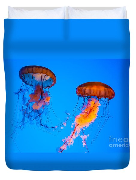 Sea Nettles Duvet Cover by Anthony Sacco