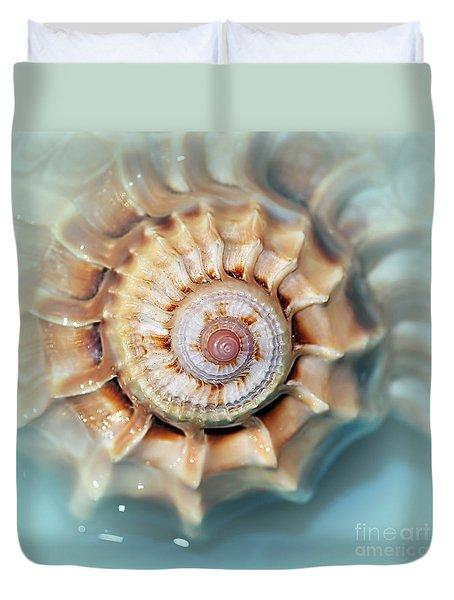 Seashell Wall Art 13 - Spiral Of Harpa Ventricosa Duvet Cover by Kaye Menner