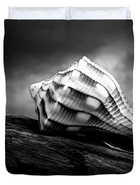 Seashell Without The Sea Duvet Cover by Bob Orsillo