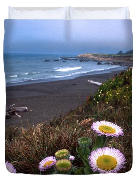 Seaside Daisies On Moonstone Beach Duvet Cover by Kathy Yates