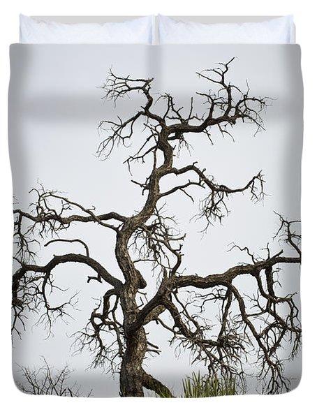 Sedona Landscape Vii Duvet Cover by David Gordon