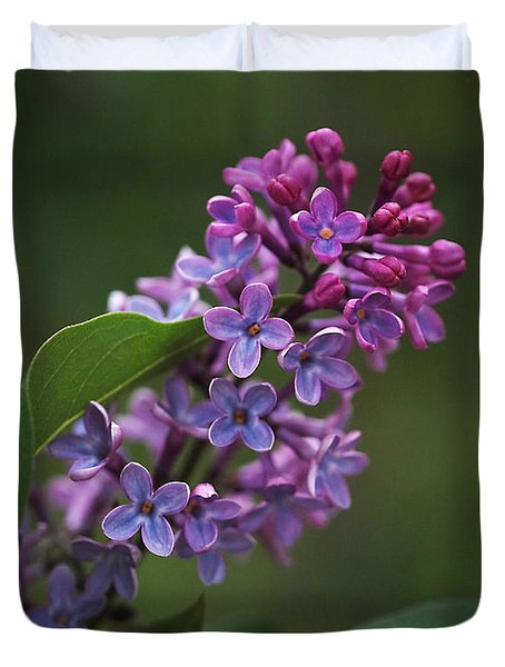 Shades Of Lilac  Duvet Cover by Rona Black