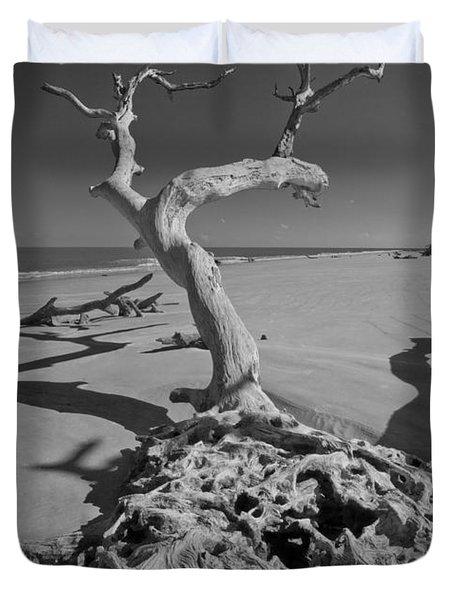 Shadows At Driftwood Beach Duvet Cover by Debra and Dave Vanderlaan