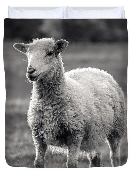 Sheep Art  Duvet Cover by Lucid Mood