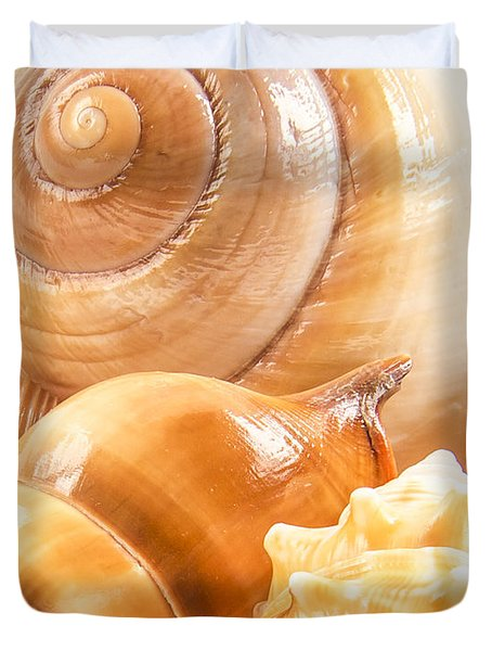 Shells Duvet Cover by Jean Noren