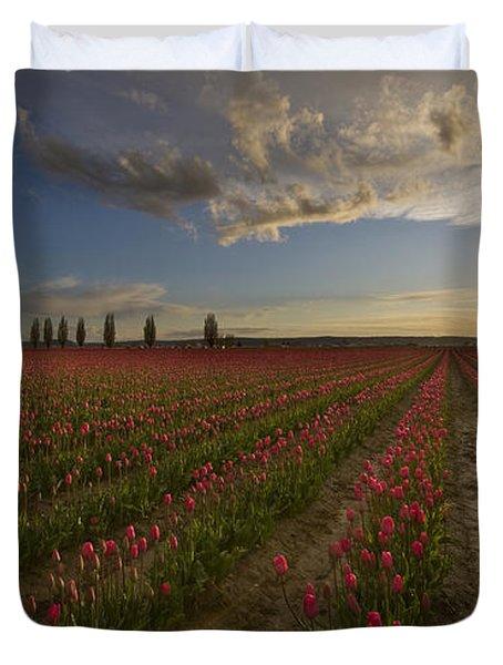 Skagit Tulip Fields Sunset Duvet Cover by Mike Reid
