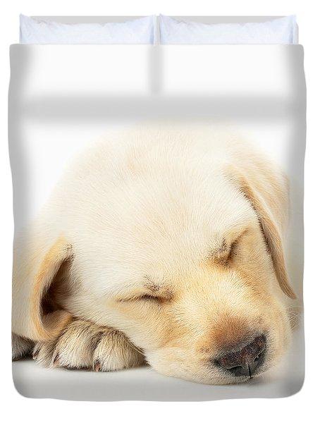 Sleeping Labrador Puppy Duvet Cover by Johan Swanepoel