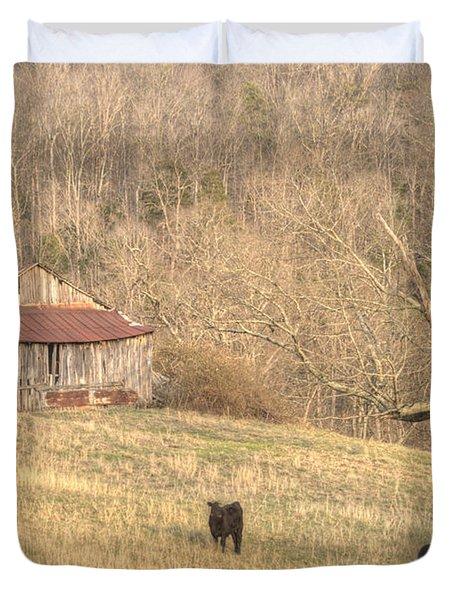 Smoky Mountain Barn 8 Duvet Cover by Douglas Barnett