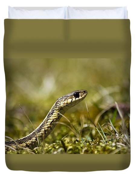 Snake Encounter Close-up Duvet Cover by Christina Rollo