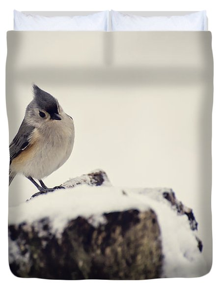Snow Bird Duvet Cover by Heather Applegate