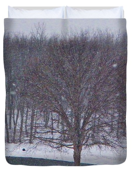 Snow Day Duvet Cover by Chris Berry