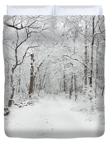 Snow In The Park Duvet Cover by Raymond Salani III