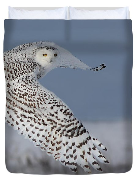 Snowy In Action Duvet Cover by Mircea Costina Photography