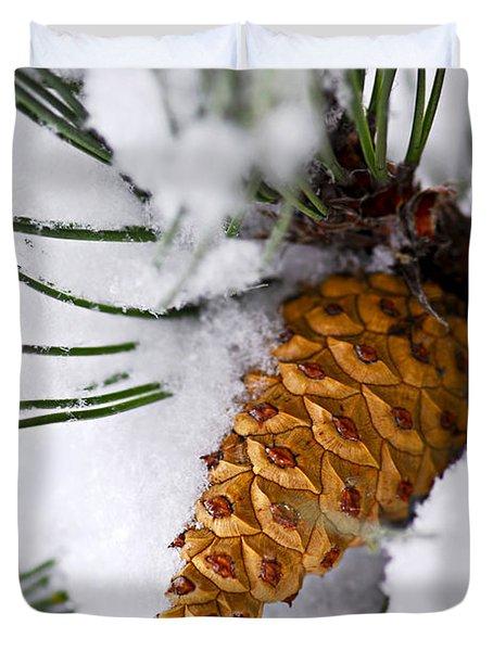 Snowy Pine Cone Duvet Cover by Elena Elisseeva
